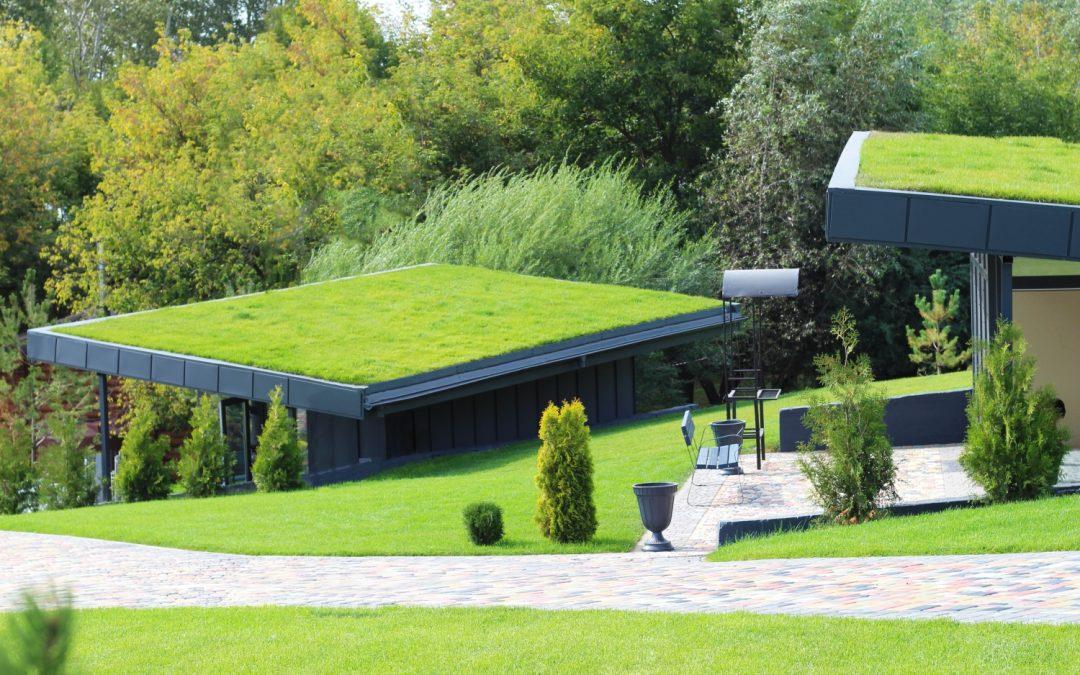 Zelene strehe – Prednosti in slabosti ter cena zelene strehe v Sloveniji